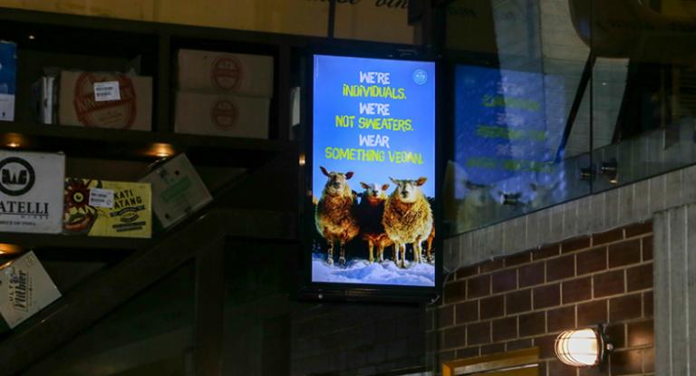 PETA India, TagTalk urge people to avoid use of animal skin in honour of World Vegan Month